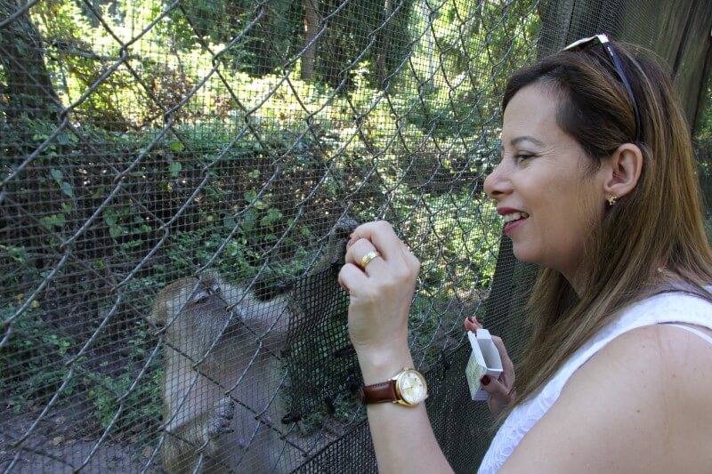 Val feeding the small monkey in the Monkey Jungle