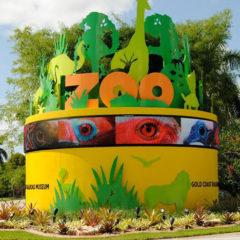 Zoom Miami Main